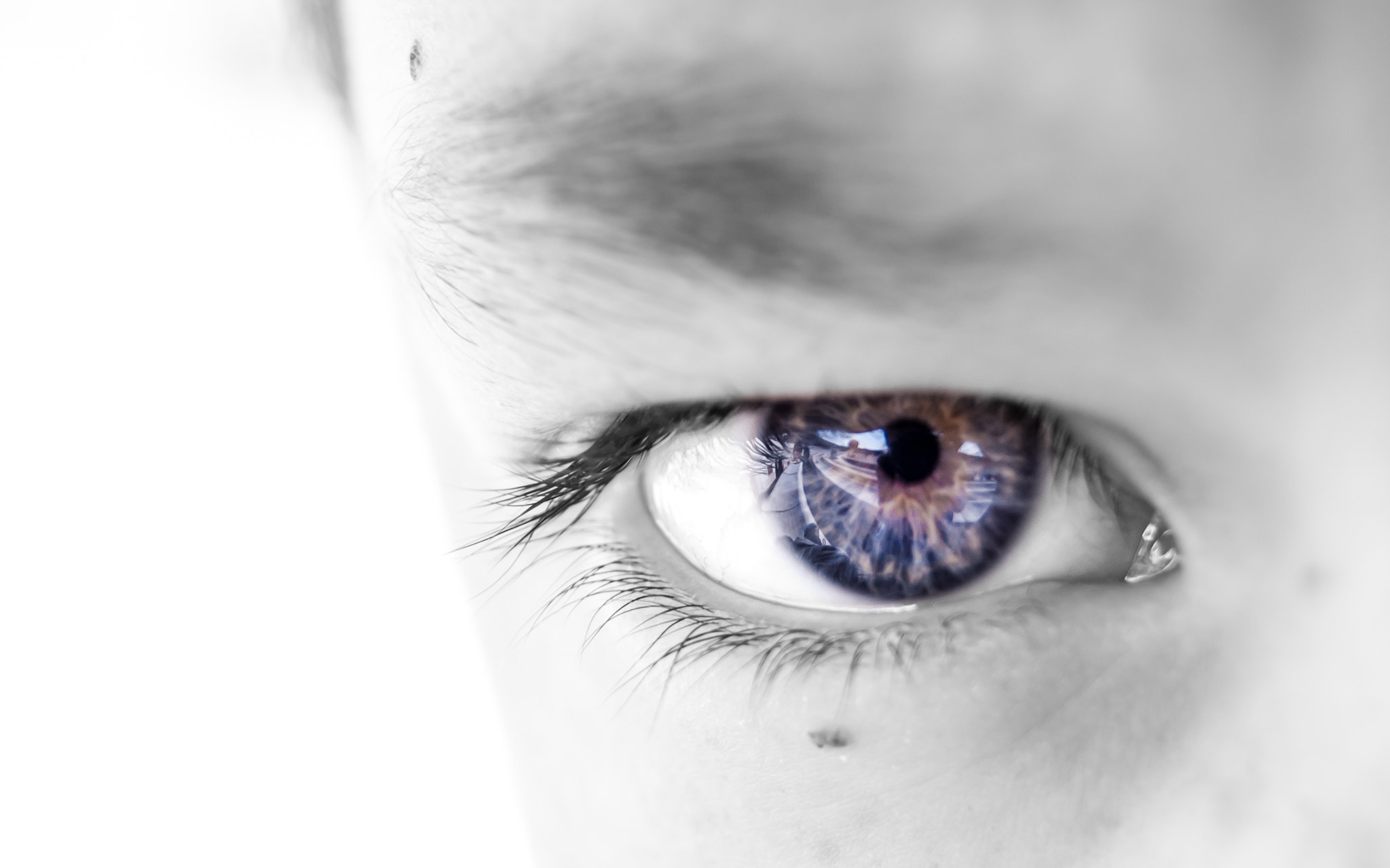 Photograph Eye by Faby Molina on 500px