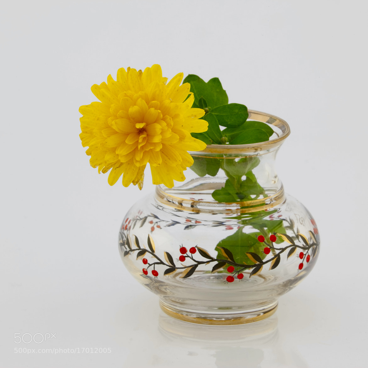 Photograph Yellow chrysanthemum in the vase by Игорь Гончаренко on 500px