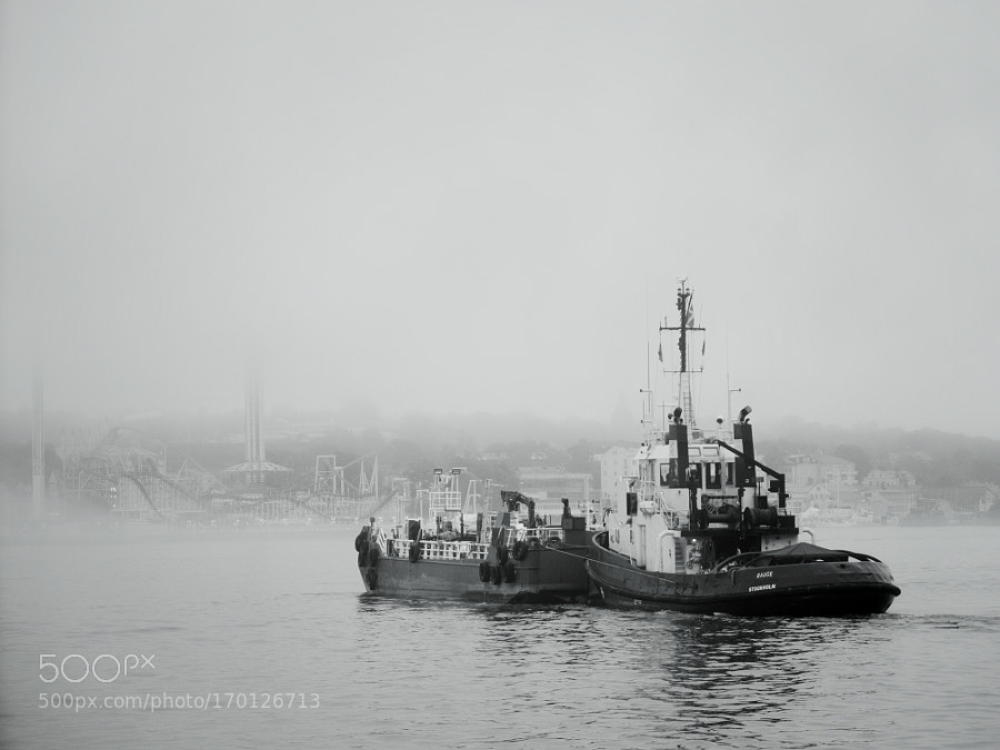 The ship and the mist