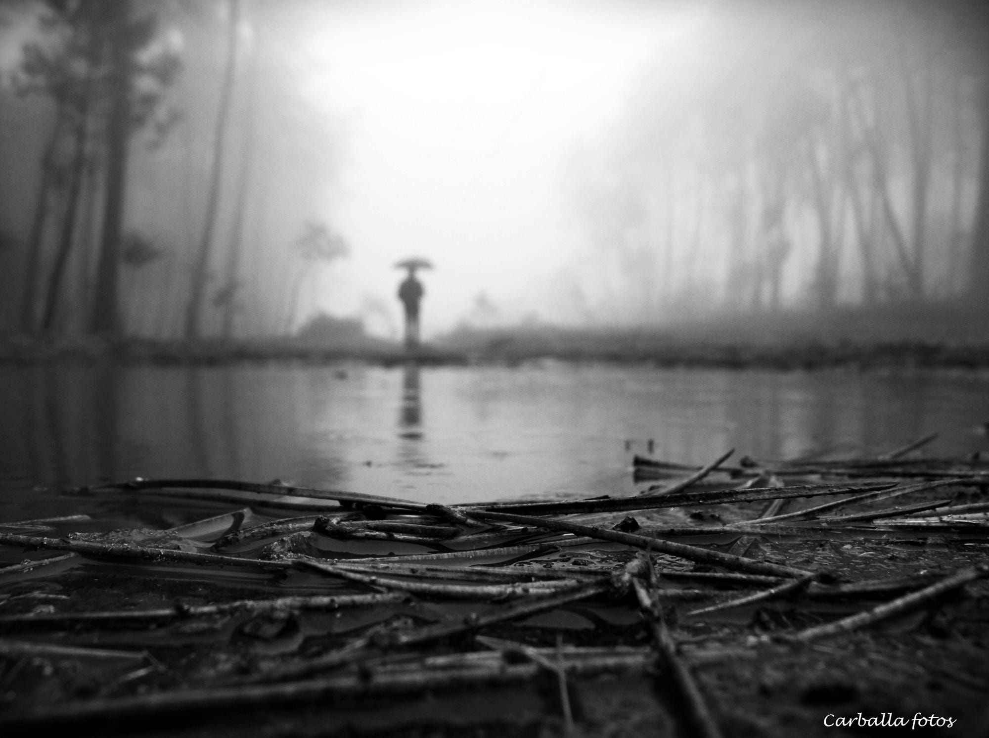 Photograph Another rainy day and fog by Guillermo  Carballa on 500px