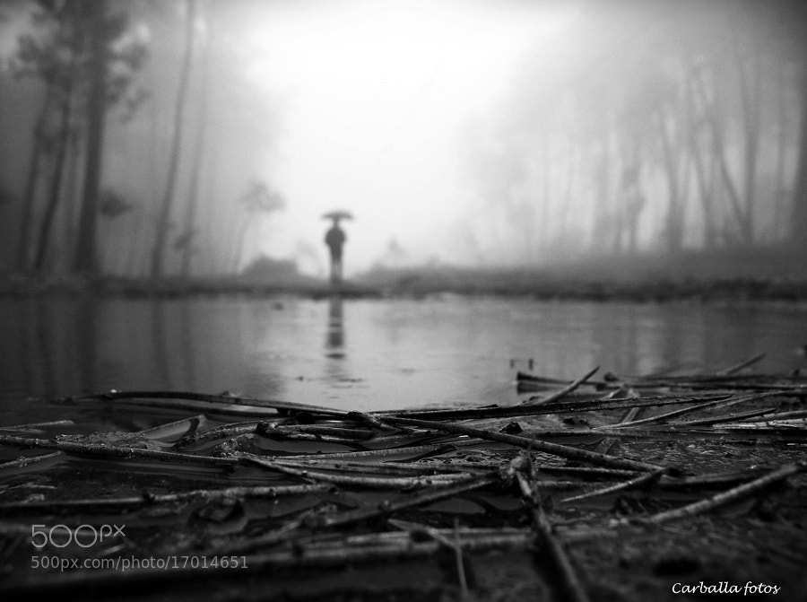 Another rainy day and fog by Guillermo Carballa on 500px.com