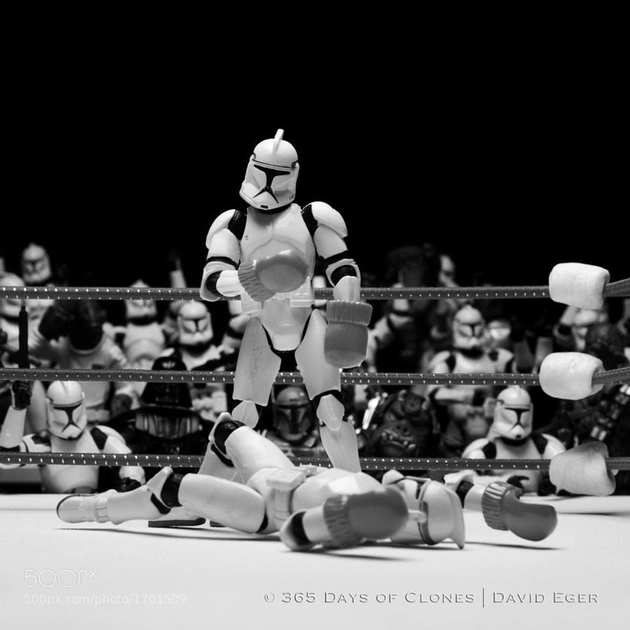 Photograph 145/365 | Trooper vs. Trooper by David Eger on 500px