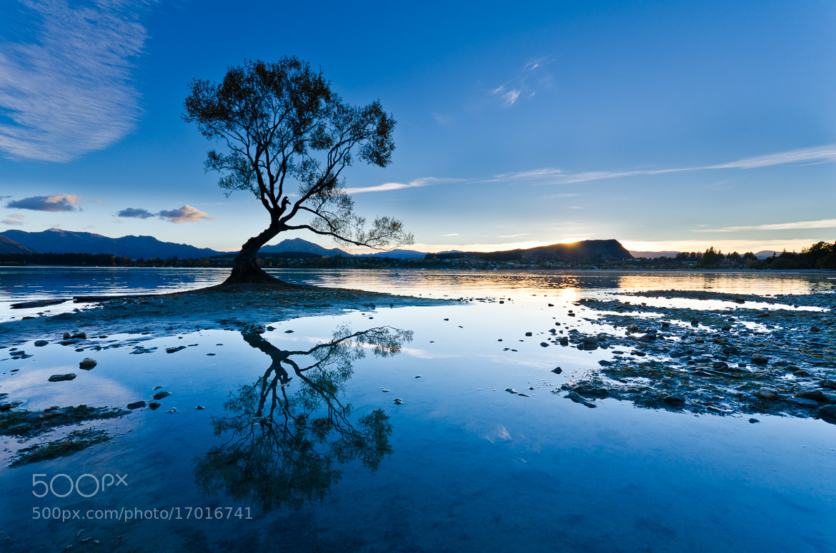 Photograph Silhouette by Jim Harding on 500px