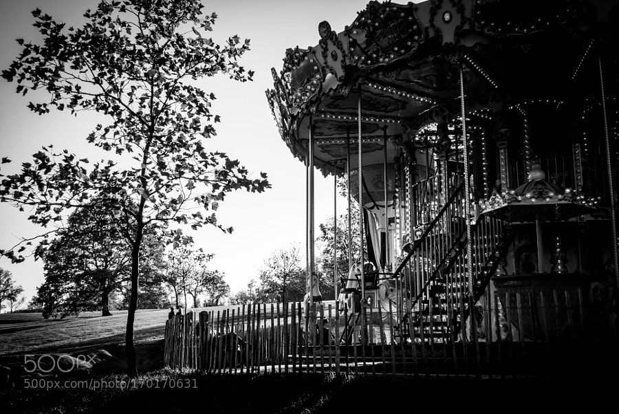 Carousel in the park !