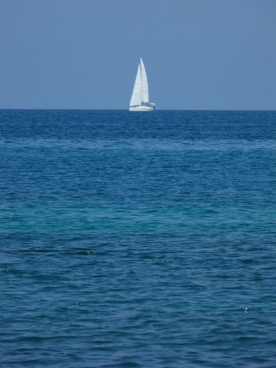 Photograph White tooth of the sea by Alice Botturi on 500px