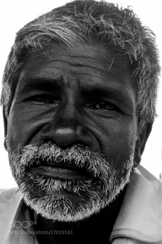 Photograph Bristles by Ritesh Garatikar on 500px