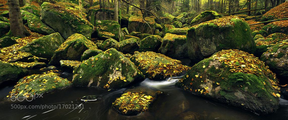 Photograph Dark Water by Kilian Schönberger on 500px