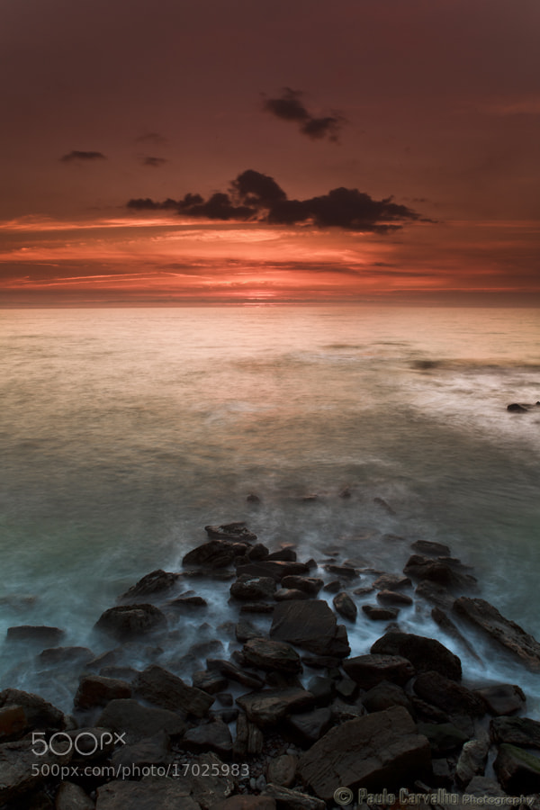 Photograph Moments by Paulo Carvalho on 500px