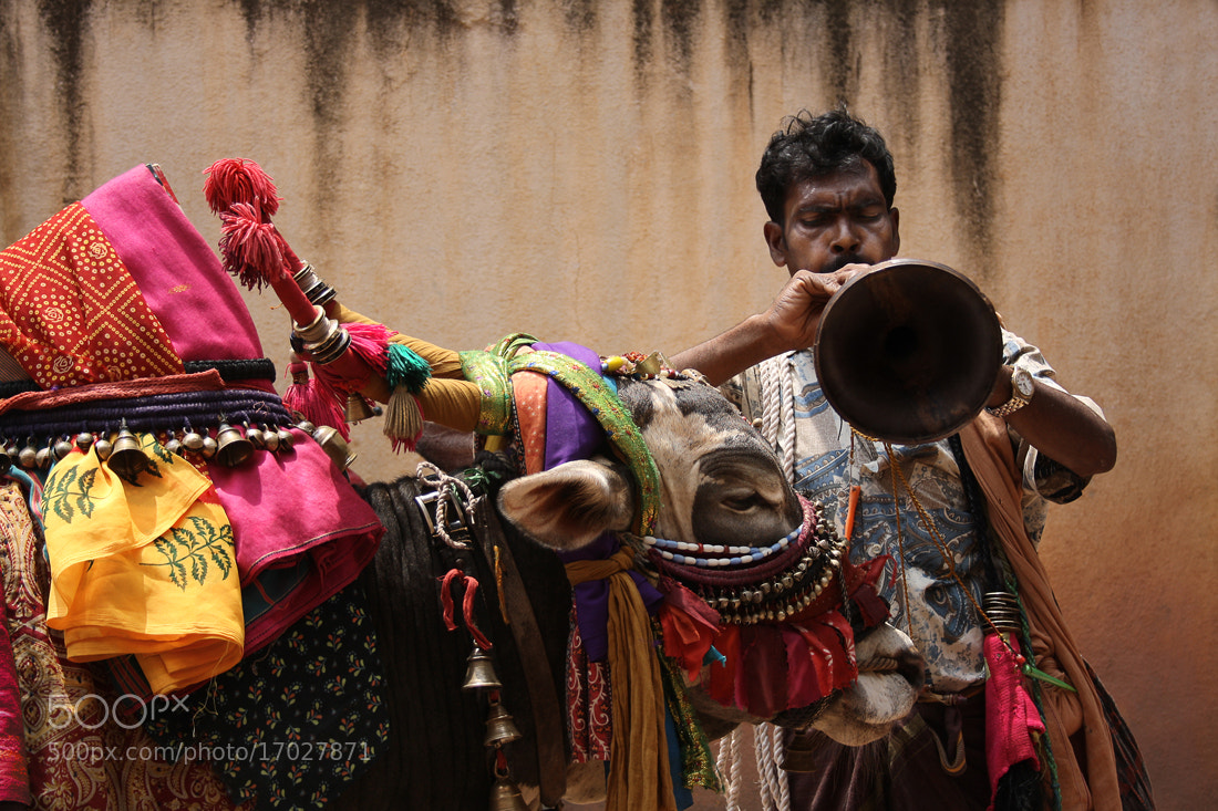 Photograph The Ox Man by CamBuff  on 500px