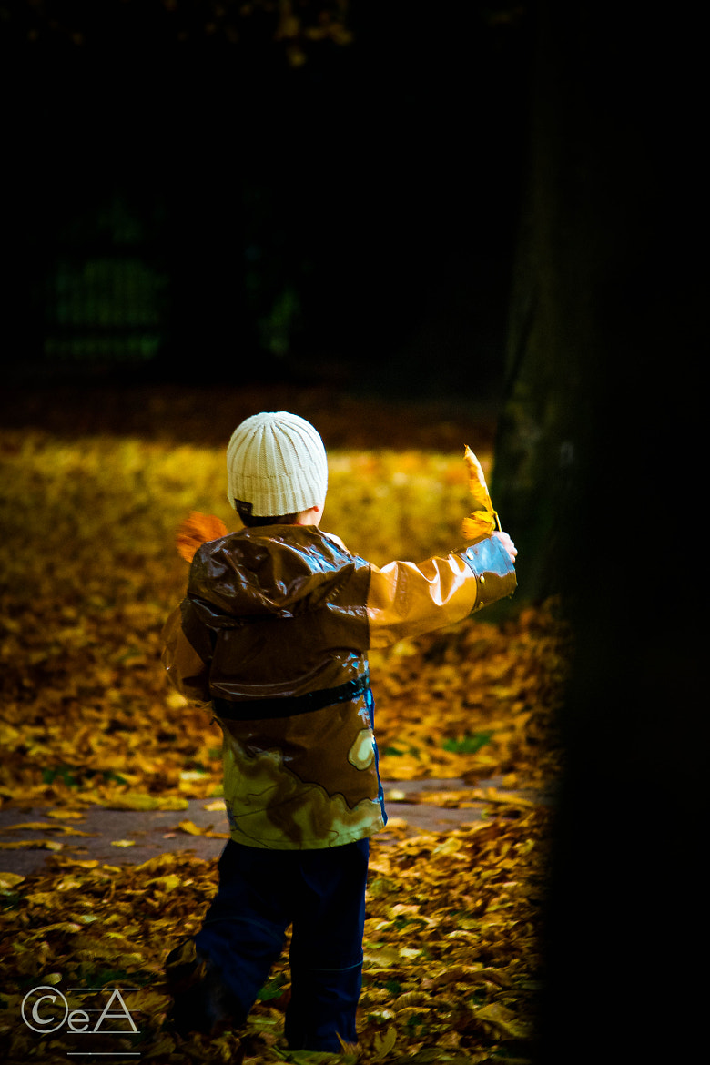 Photograph Boy playing with leaves at fall time'. by Ershad Ashraf on 500px