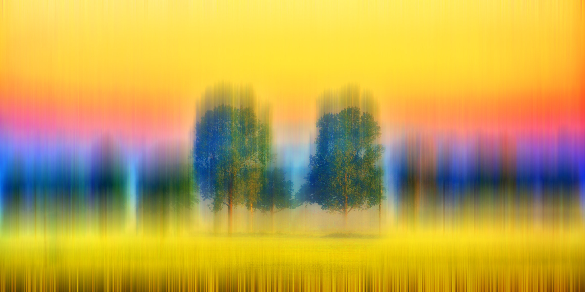 Photograph a line of trees by Thomas Christoph on 500px