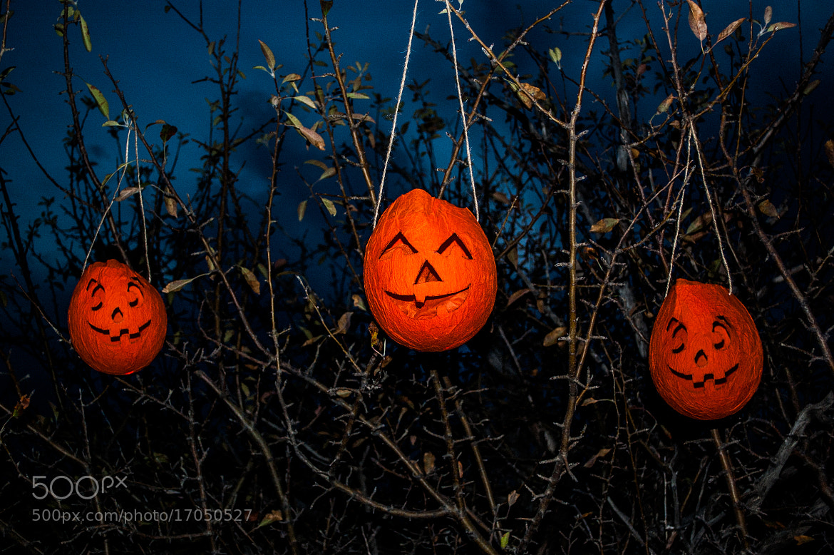 Photograph Halloween trio  by Longland  River on 500px