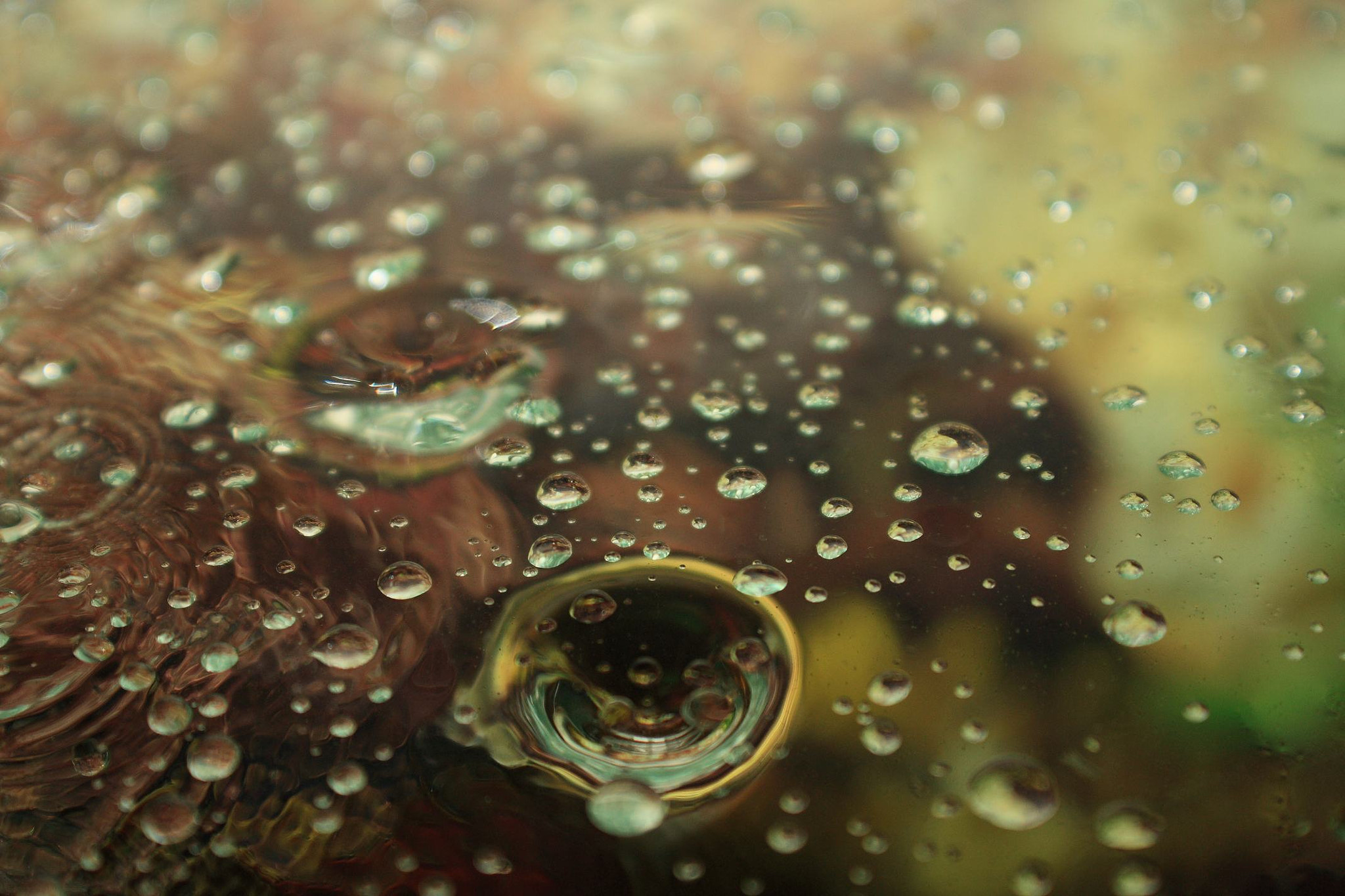 Photograph drops by Alexey Vishnyakov on 500px