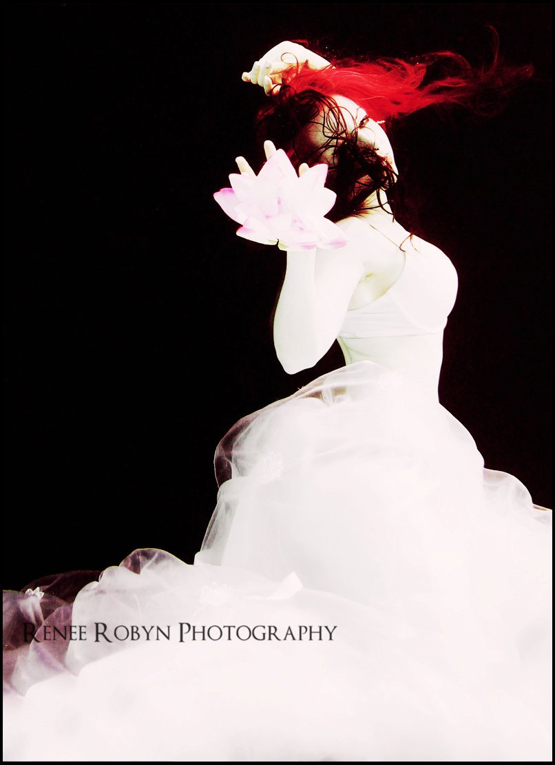Photograph The White Queen by Renee Robyn on 500px