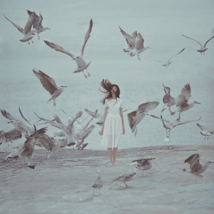 fly away by Anka Zhuravleva on 500px.com