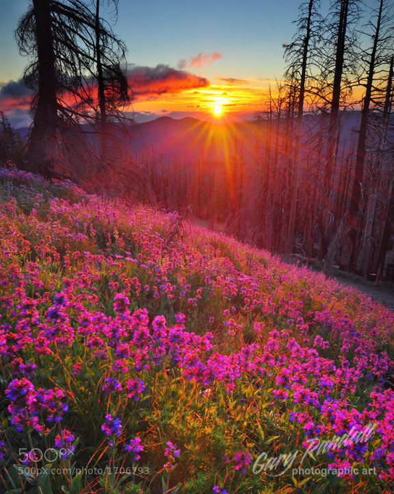 Photograph Alpine Sunrise by Gary Randall on 500px
