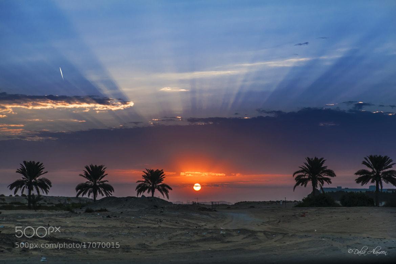 Photograph A desert sunrise  by Dalia Al Ameen on 500px