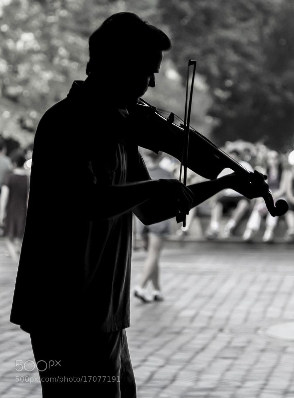 Photograph Lone Violinist by Georgina Gomez on 500px