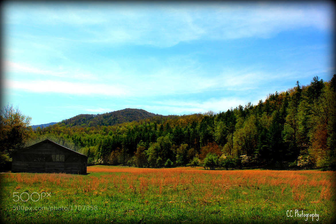 Photograph Cataloochee by Charlene Clark  on 500px