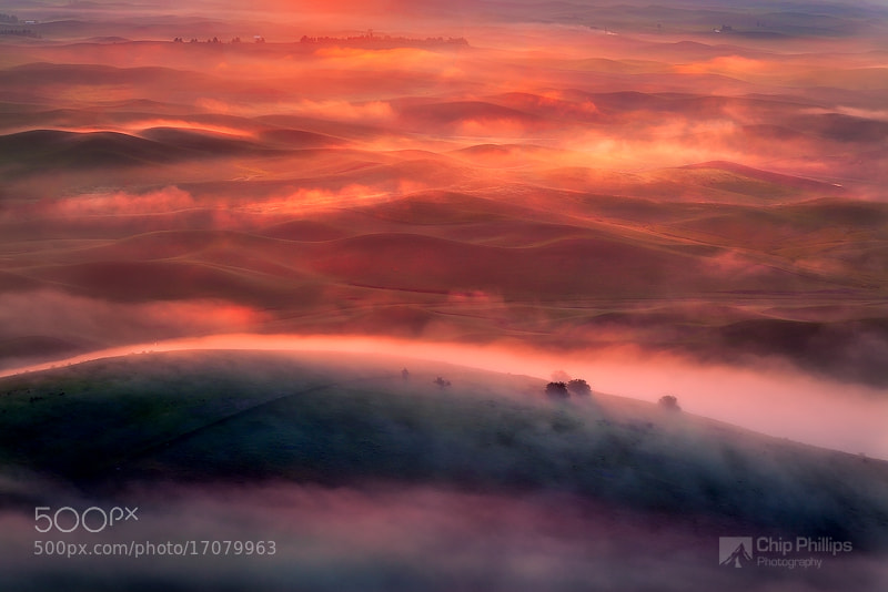 Photograph Foggy Sunrise Palouse by Chip Phillips on 500px