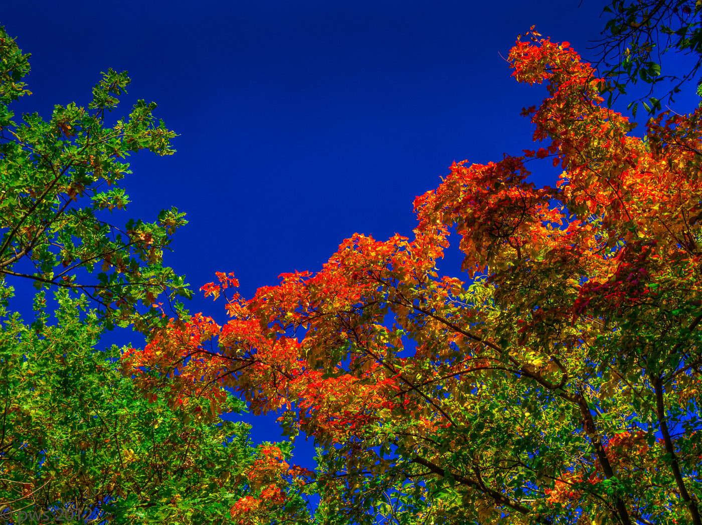 Photograph autumn's colors by Paul Werner Suess on 500px