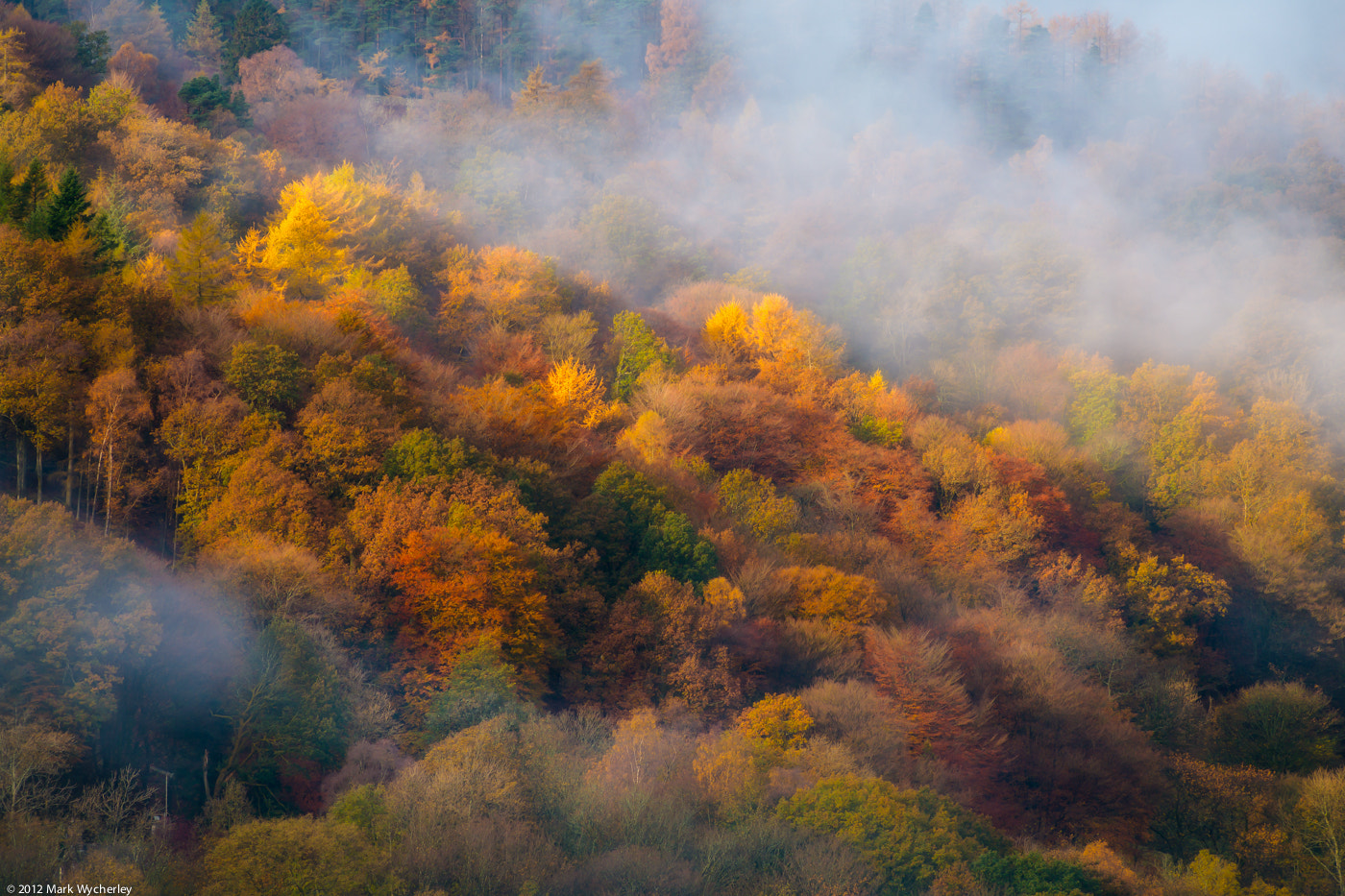 Photograph Autumn mists by Mark Wycherley on 500px