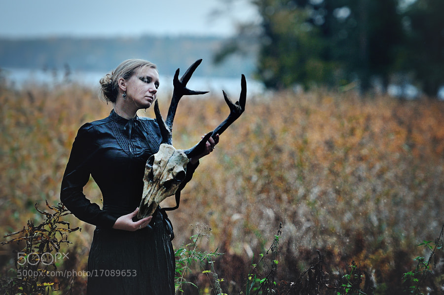 Photograph She|deer Sixth by Alexander Wolf on 500px