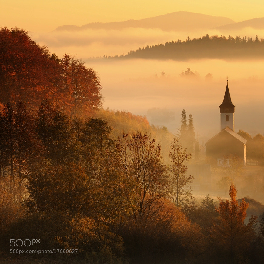 Photograph the castle of fog guard by Sebastian Luczywo on 500px
