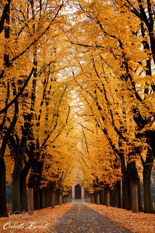 Photograph a un passo dall'inverno... by ombretta  roncarati on 500px