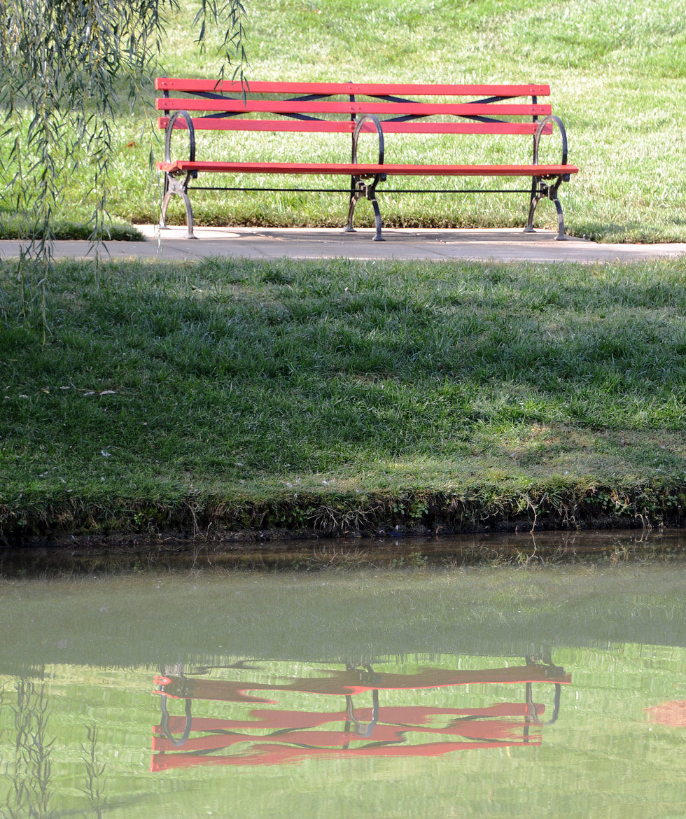 Photograph The Red Bench 2 by Mark Luftig on 500px
