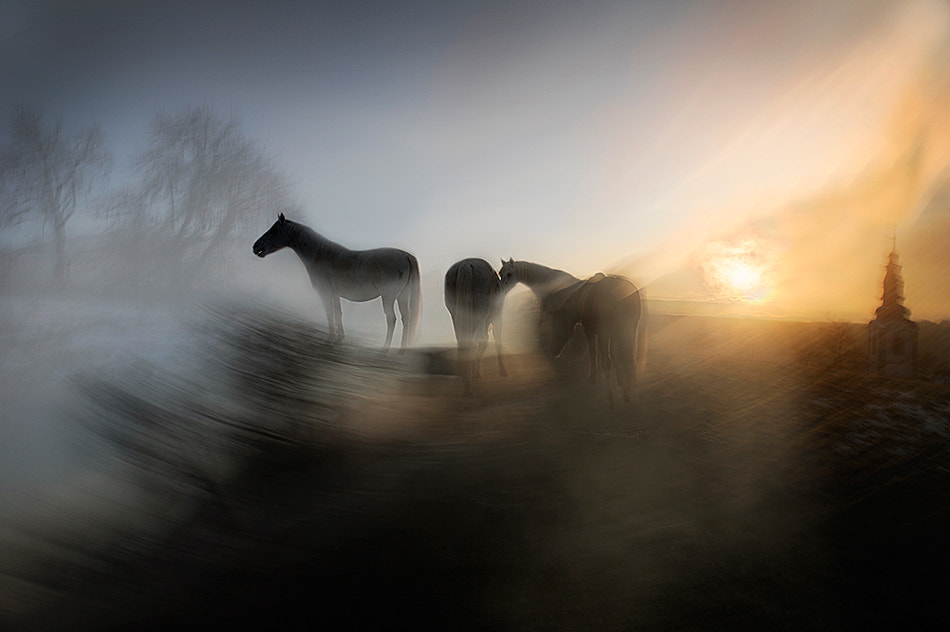 Photograph morning by Milan Malovrh on 500px