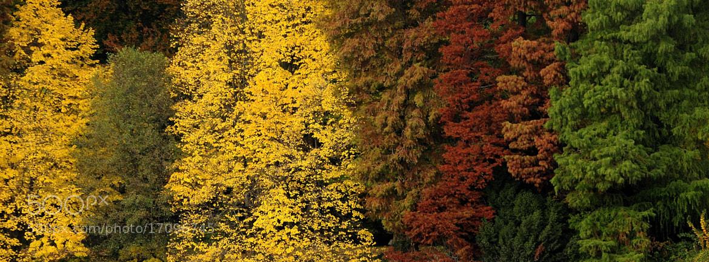 Photograph a chacun sa couleur by kak tuss on 500px