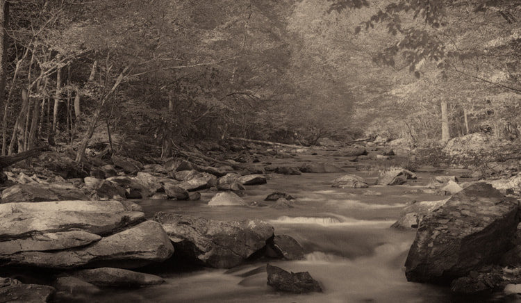 Photograph Little River by Jim Cole on 500px