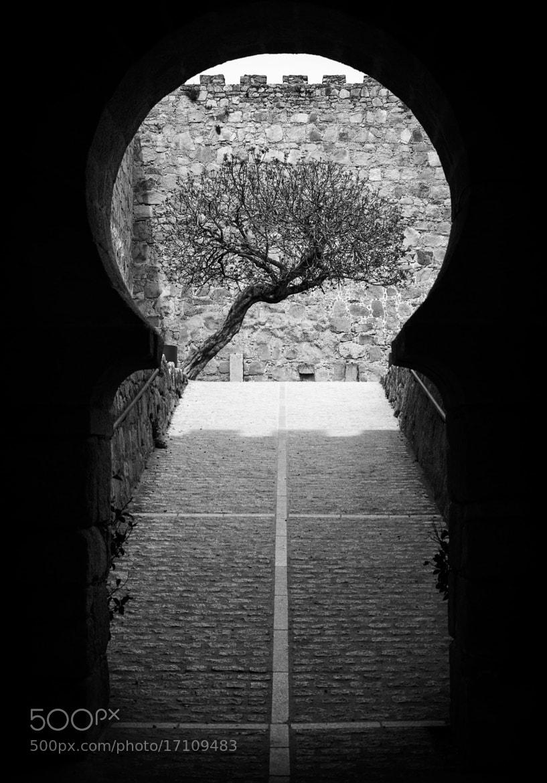 Photograph Arab door of the castle by Enrico Maria Crisostomo on 500px