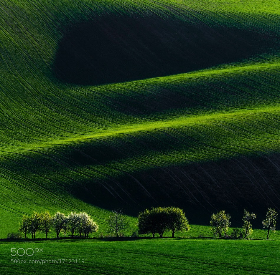 Photograph South Moravia by Peter-I on 500px