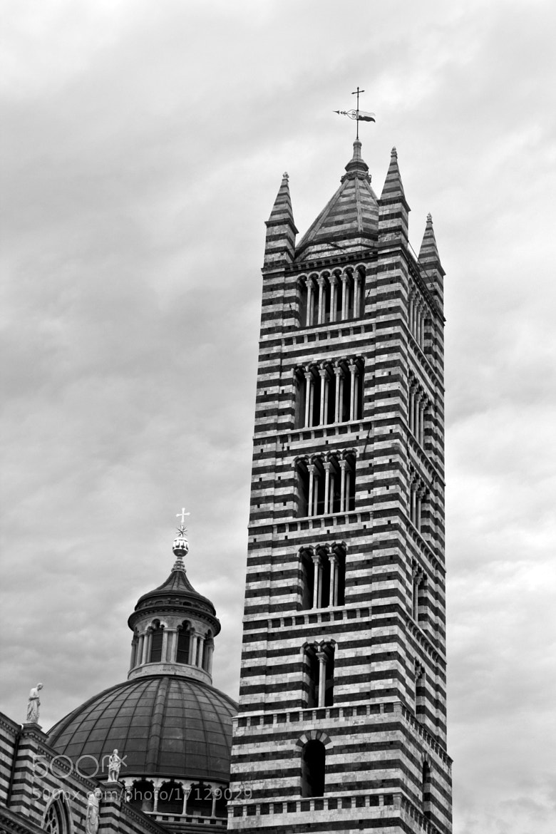 Photograph duomo di Siena by alessandro fermanelli on 500px