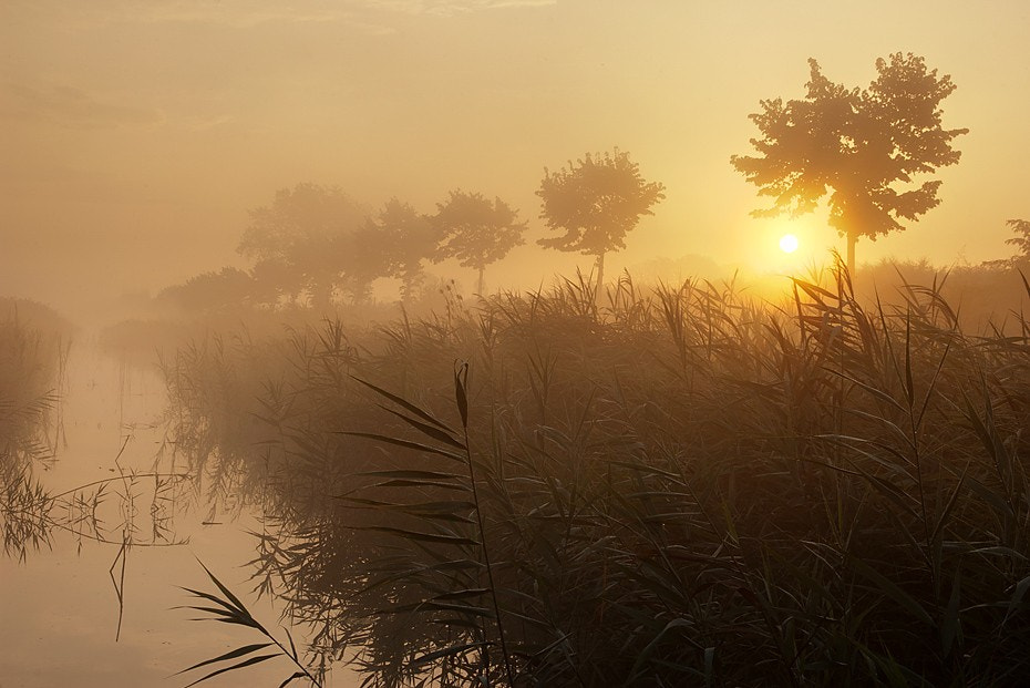 Photograph Morning in Eraclea Mare by Ondřej Jirků on 500px