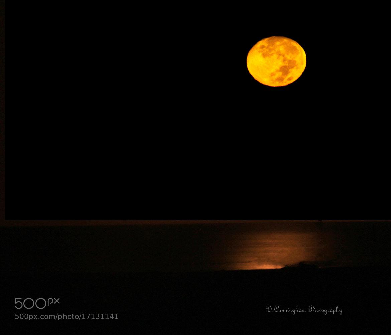 Photograph Harvest Moon by Dorothy Cunningham on 500px
