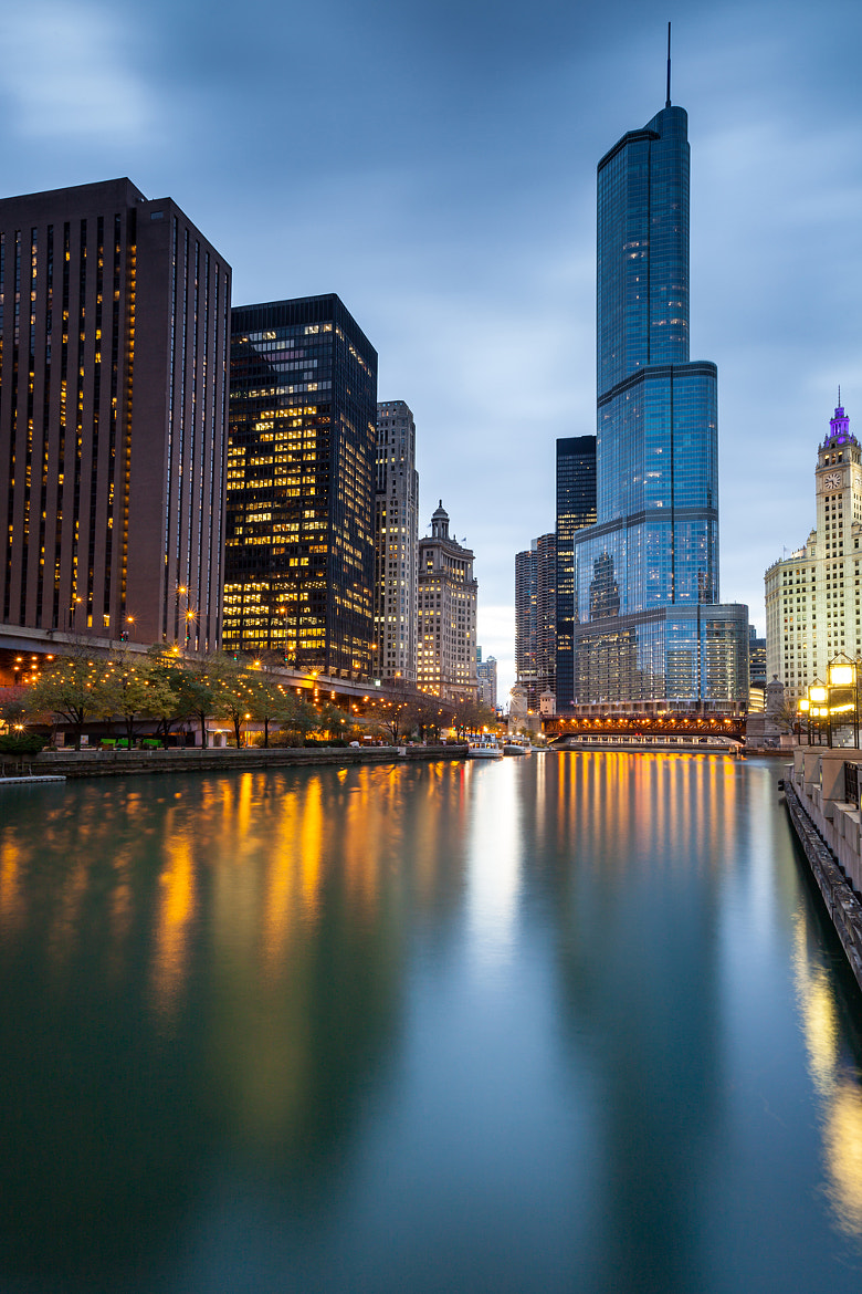 Photograph Blue Hour Chicago by Rich Williams on 500px