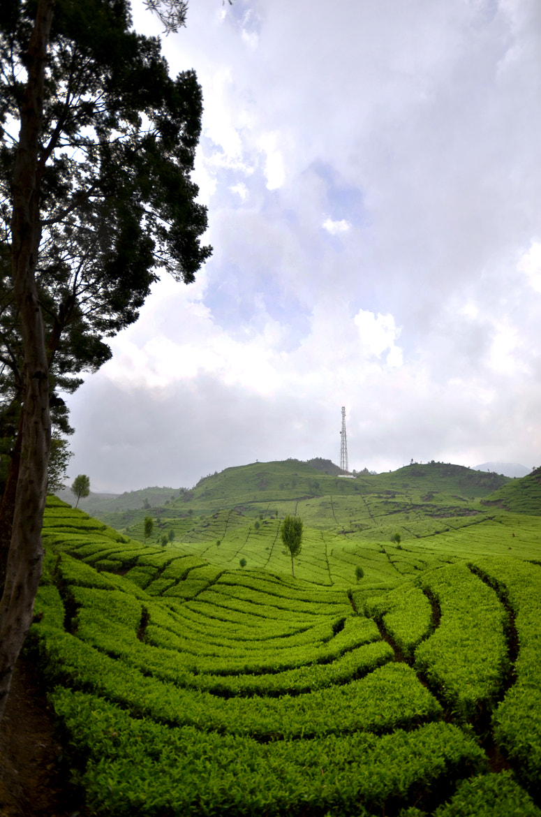 Photograph The hills by Putra Tashmil on 500px