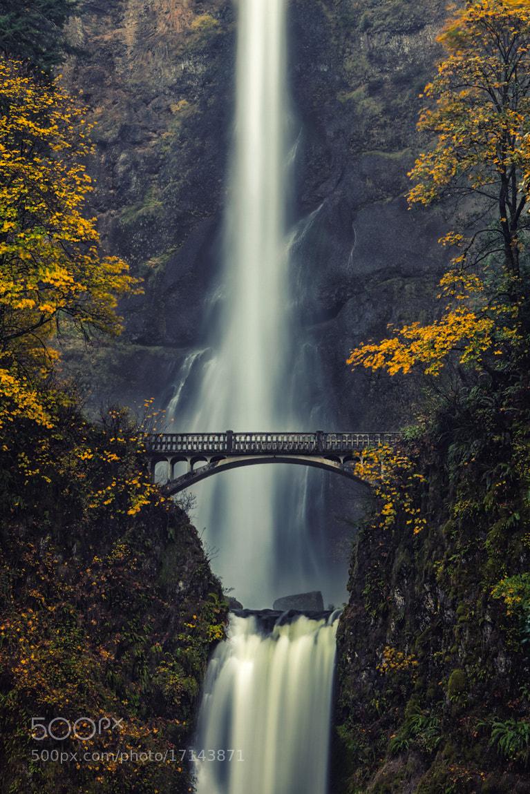 Photograph Multnomah Falls by Ryan Painter on 500px