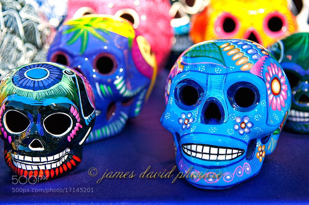 Photograph Skulls by James David Phenicie on 500px