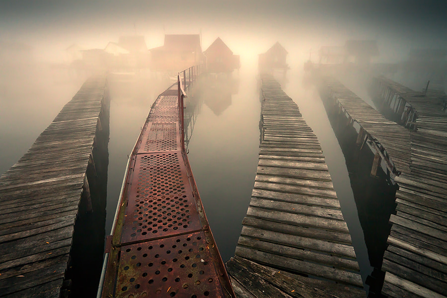 Photograph forgotten hope by Adam Dobrovits on 500px