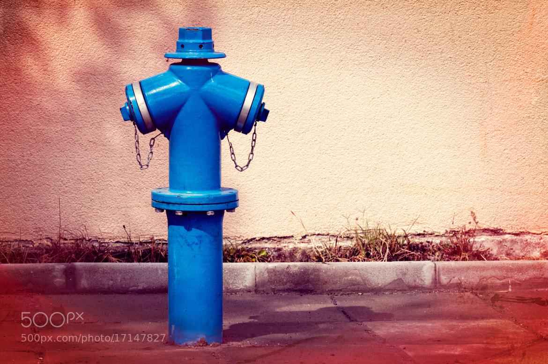 Photograph Street fire hydrant by Diyan Nenov on 500px