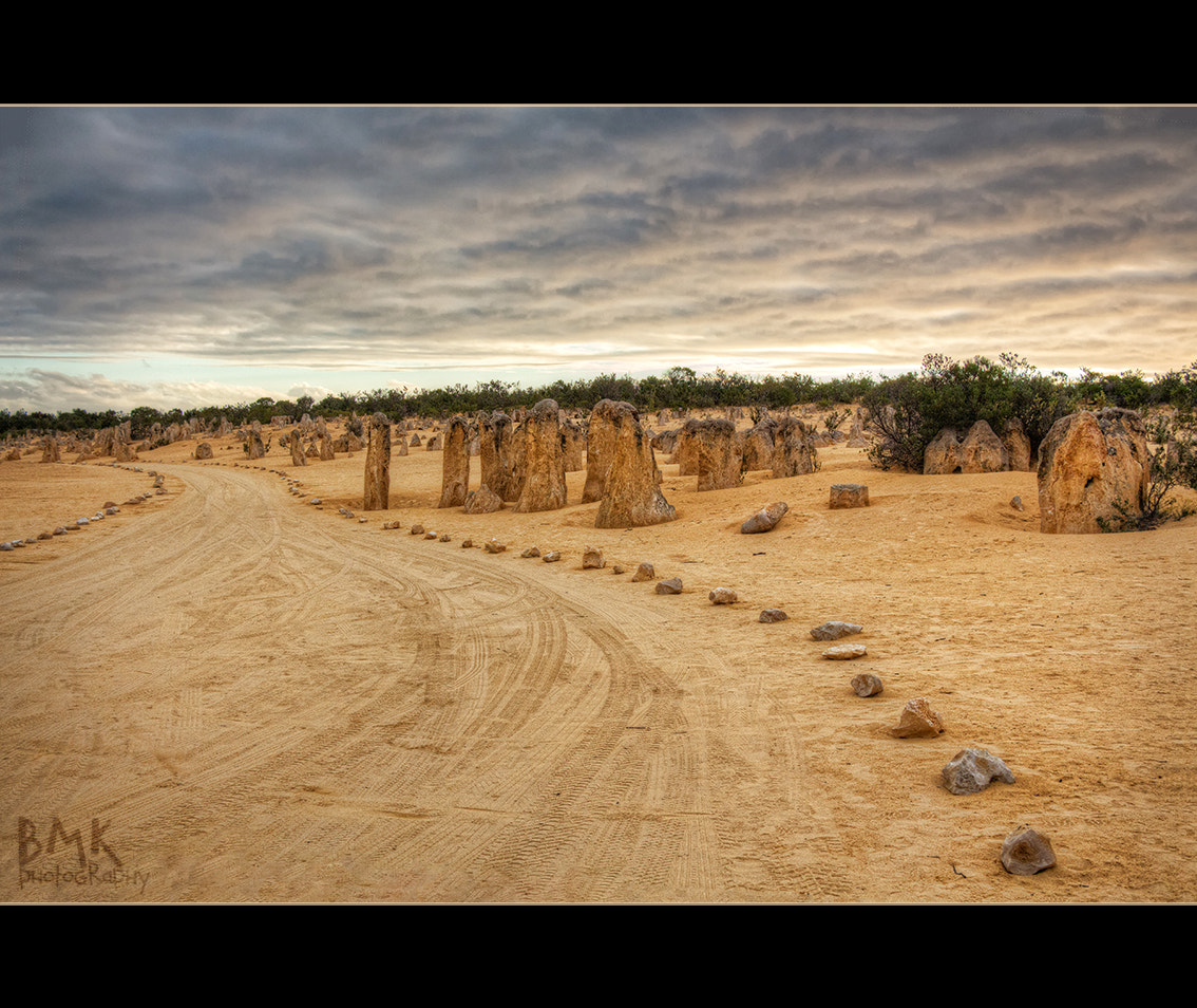 Photograph The Road through the Pinnacles by Bianca K on 500px