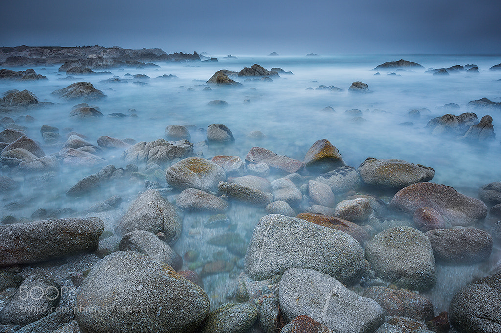 Photograph Cocoon by Francesco Gola on 500px