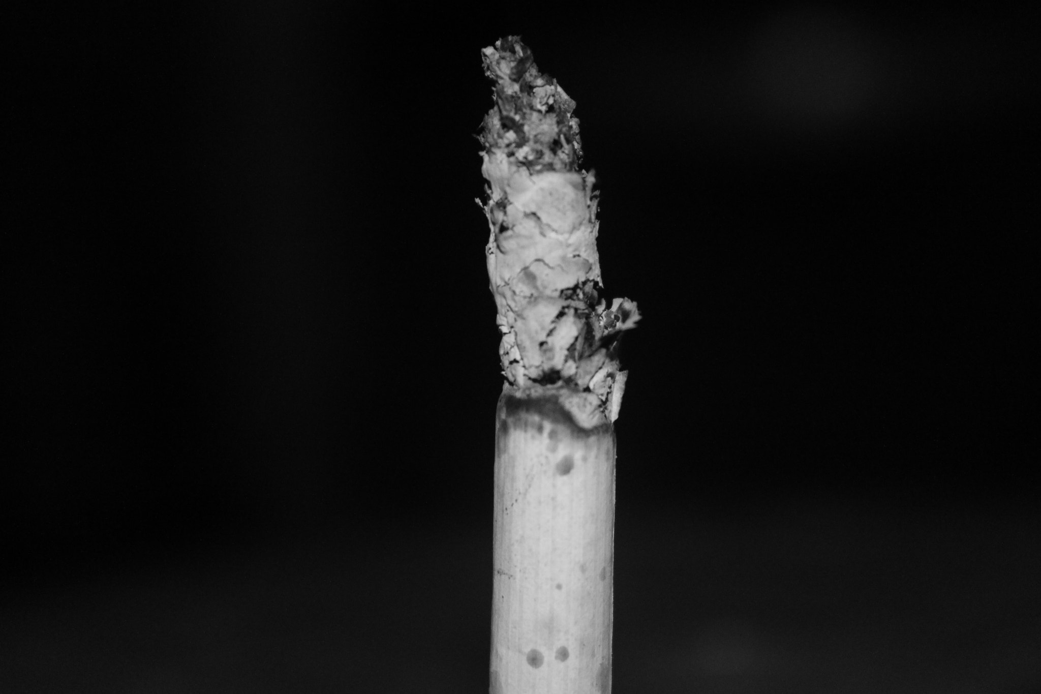 Photograph cigarette butt by Sastra Nababan on 500px