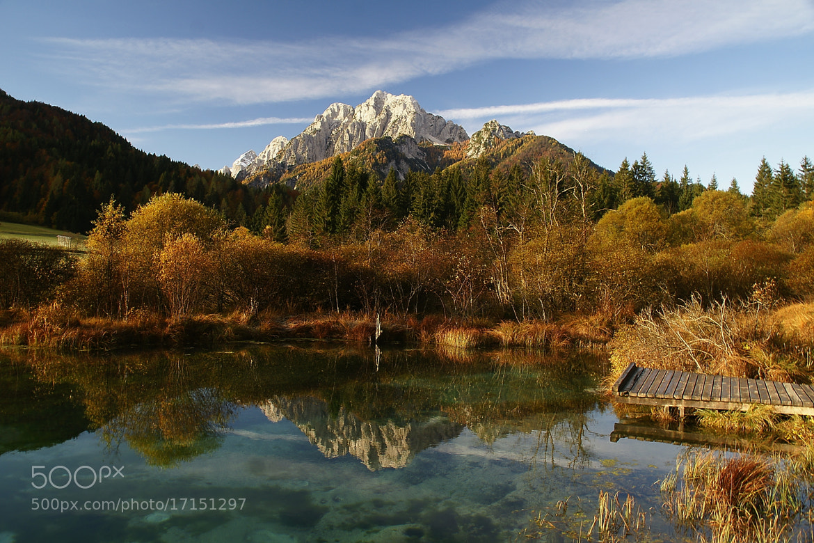 Photograph Zelenci by Branko Frelih on 500px
