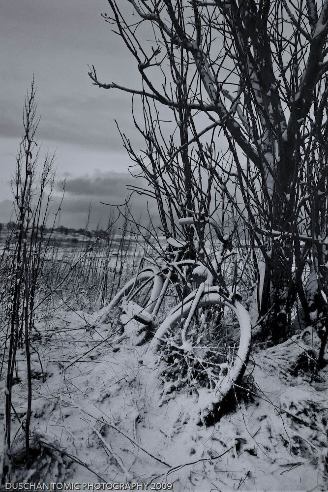 Photograph FORGOTTEN BICYCLE by Duschan Tomic on 500px