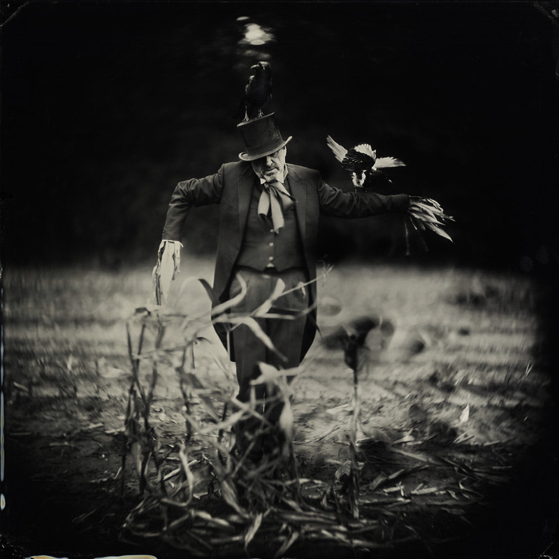 """Photograph """"Scarecrow"""" by Alex  Timmermans on 500px"""